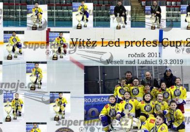 LEDprofes Cup 2019